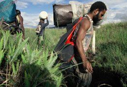 West Papua 2 – Ein Grenzgang zwischen Erfolg und Niederlage