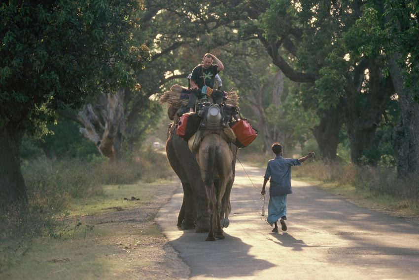 Mit Elefanten zu Fuß durch Indien